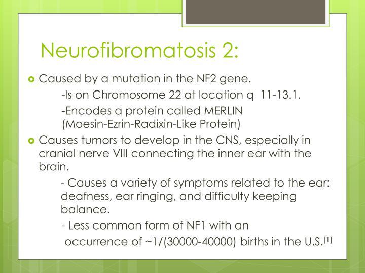 Neurofibromatosis 2: