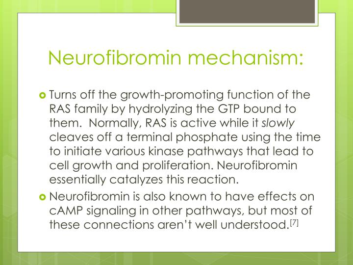 Neurofibromin mechanism: