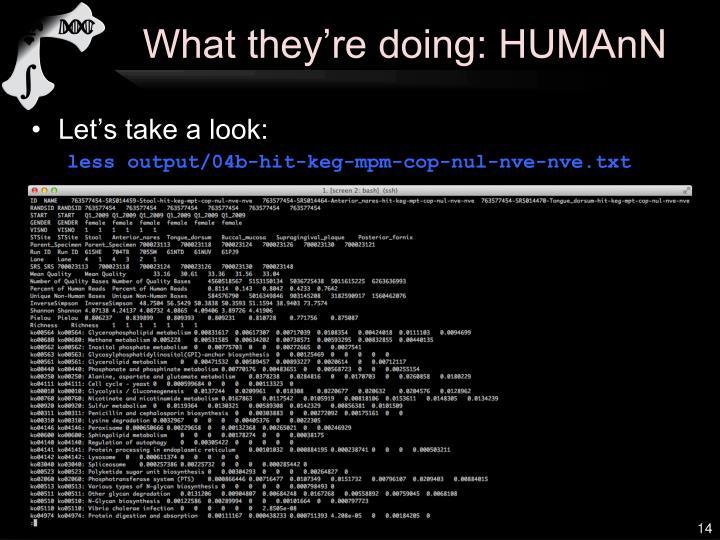 What they're doing: HUMAnN