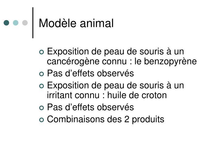 Modèle animal