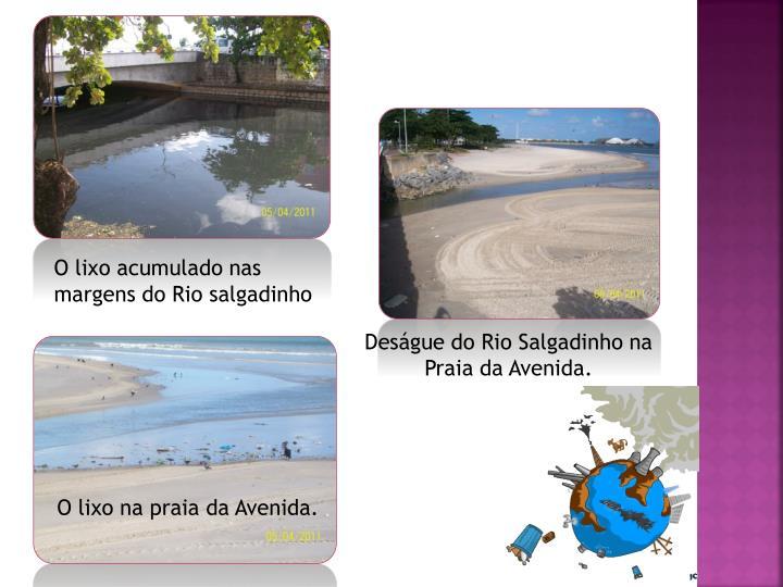 O lixo acumulado nas margens do Rio salgadinho