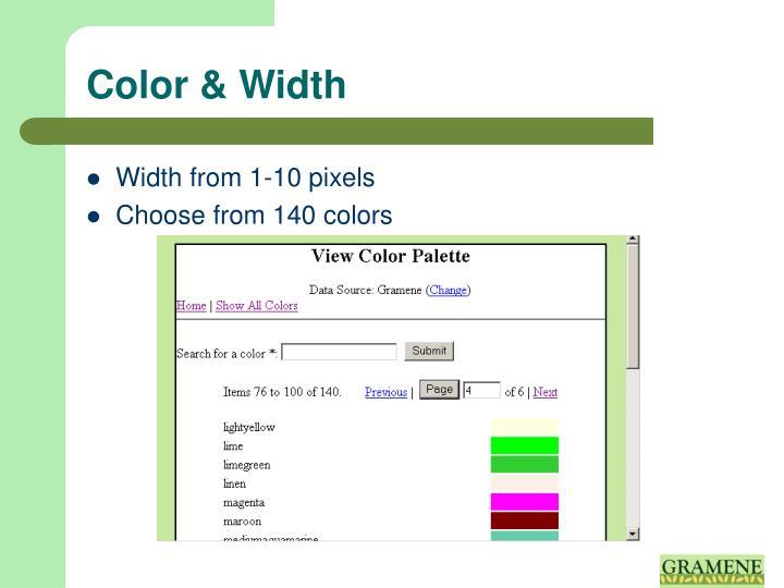 Color & Width