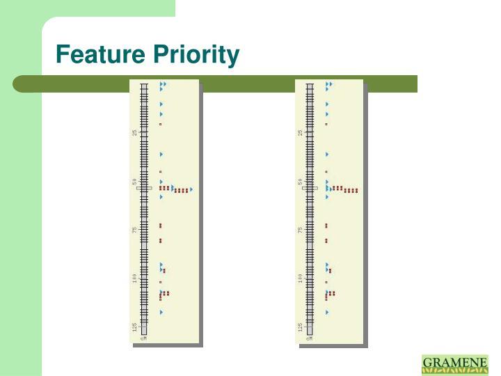 Feature Priority