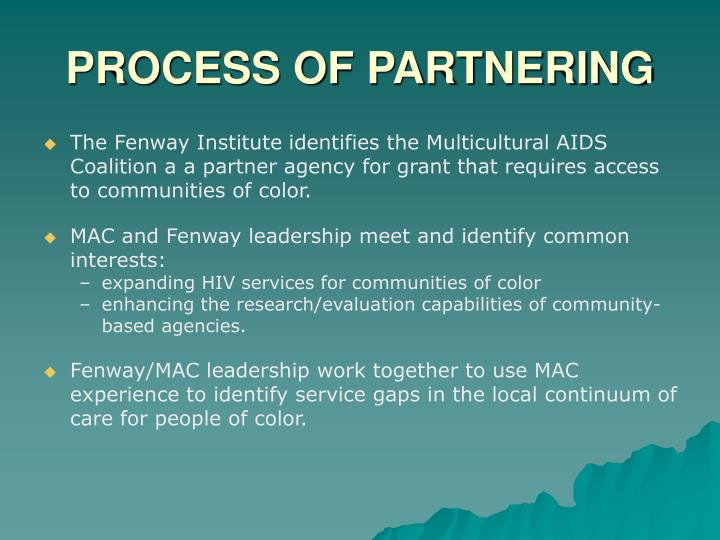PROCESS OF PARTNERING