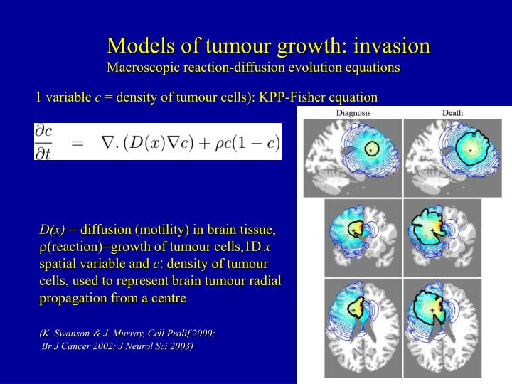 Models of tumour growth: invasion