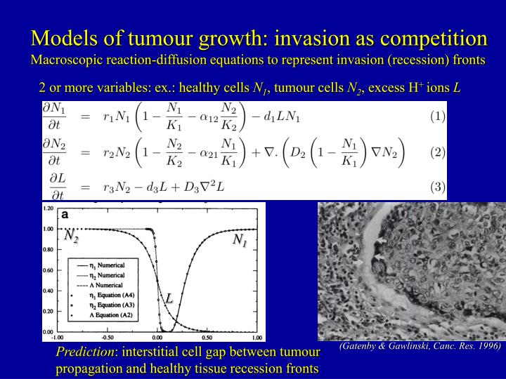 Models of tumour growth: invasion as competition