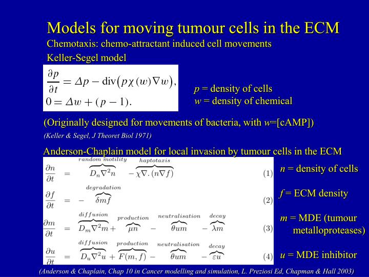 Models for moving tumour cells in the ECM