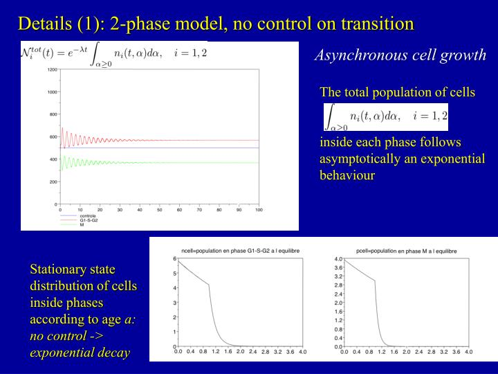 Details (1): 2-phase model, no control on transition