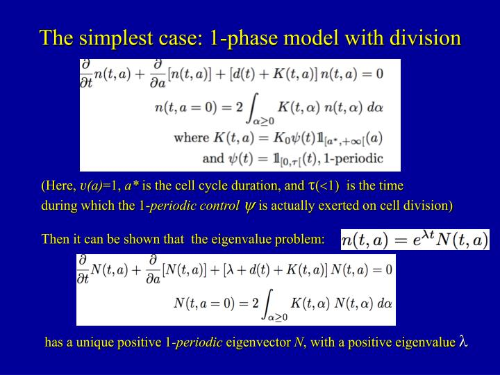 The simplest case: 1-phase model with division