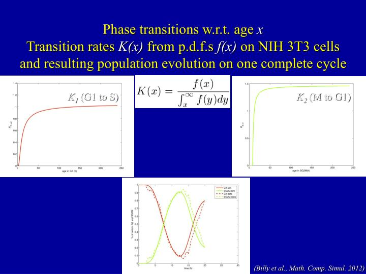 Phase transitions w.r.t. age