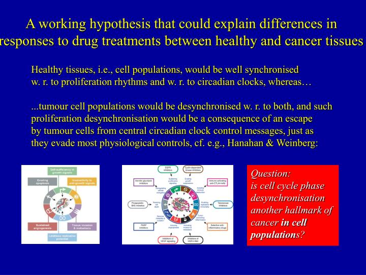 A working hypothesis that could explain differences in responses to drug treatments between healthy and cancer tissues