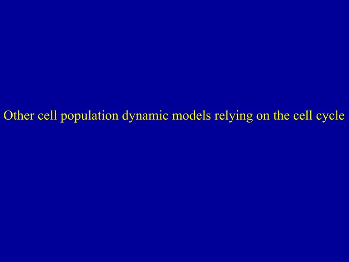 Other cell population dynamic models relying on the cell cycle