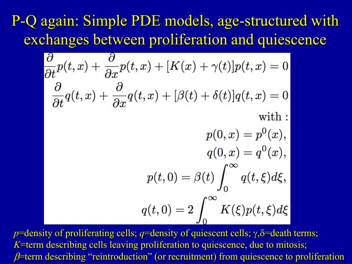 P-Q again: Simple PDE models, age-structured with