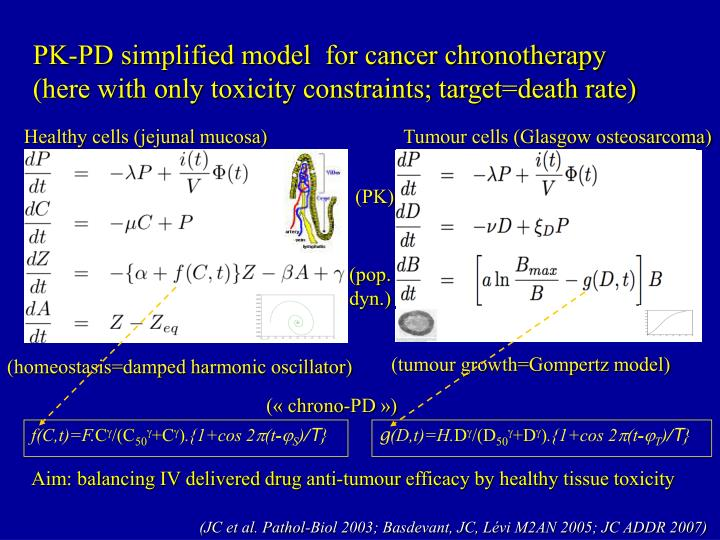 PK-PD simplified model  for cancer chronotherapy