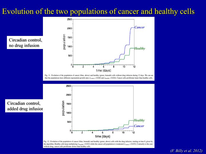 Evolution of the two populations of cancer and healthy cells