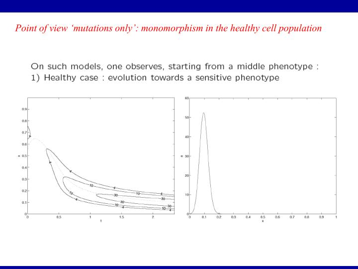 Point of view 'mutations only': monomorphism in the healthy cell population