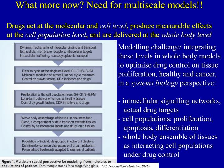 What more now? Need for multiscale models!!