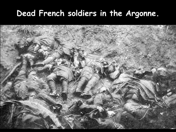 Dead French soldiers in the Argonne.