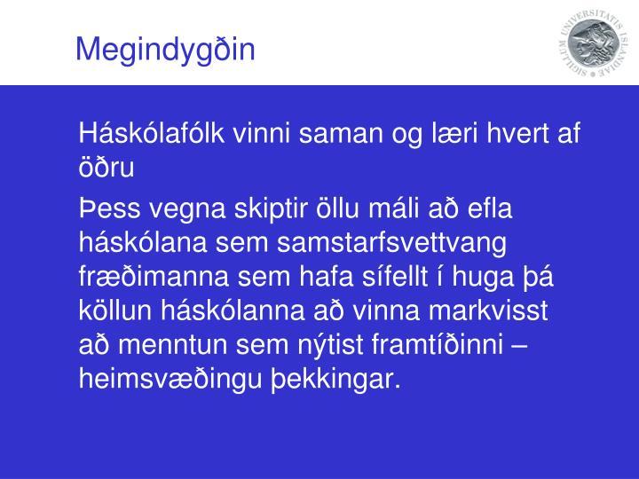 Megindygðin