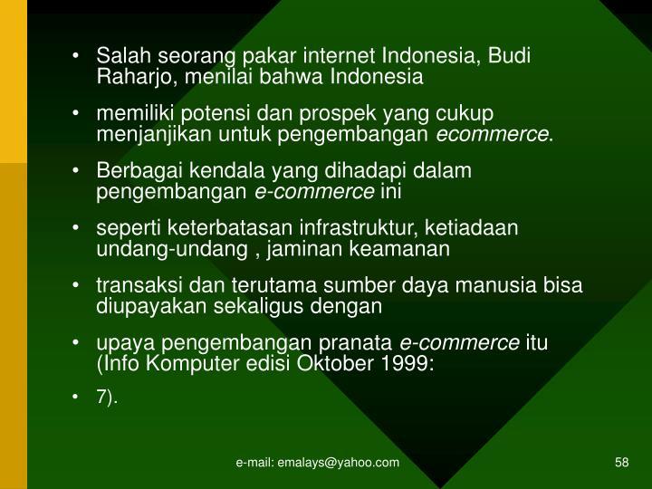 Salah seorang pakar internet Indonesia, Budi Raharjo, menilai bahwa Indonesia