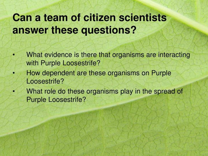 Can a team of citizen scientists answer these questions