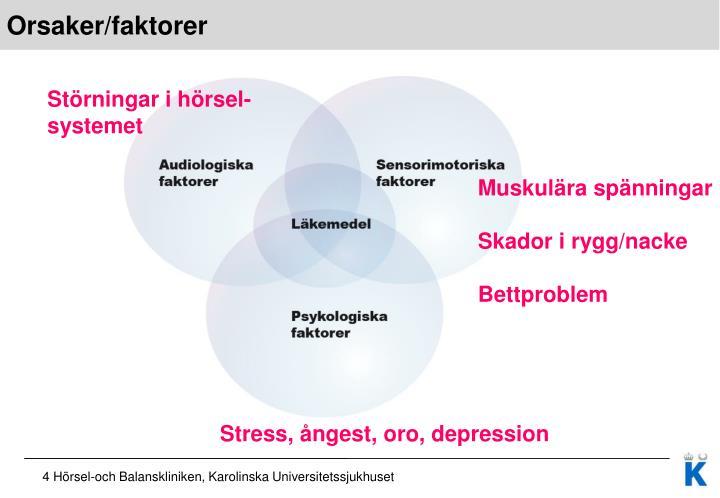 Orsaker/faktorer