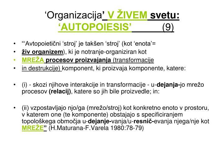 'Organizacija