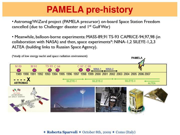 PAMELA pre-history