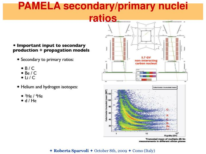 PAMELA secondary/primary nuclei ratios