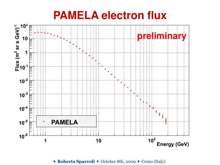 PAMELA electron flux