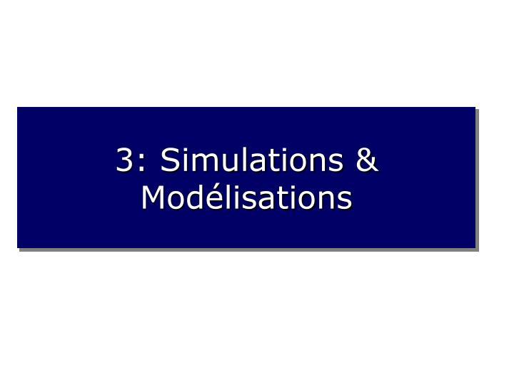 3: Simulations & Modélisations
