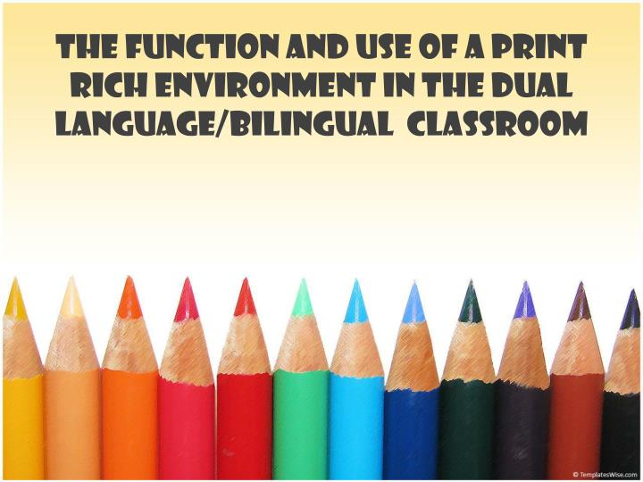The function and use of a print rich environment in the dual language bilingual classroom