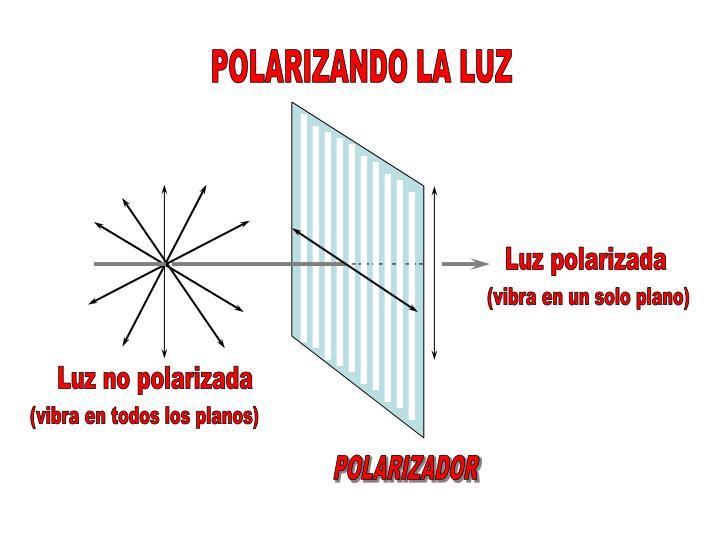 POLARIZANDO LA LUZ