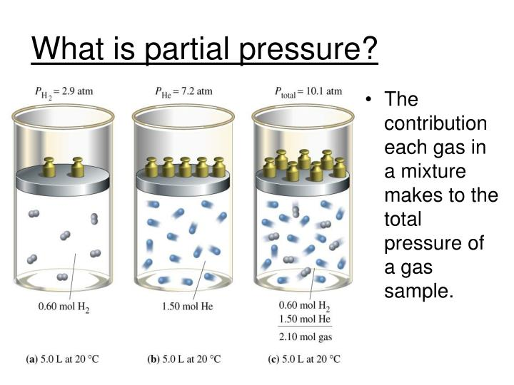 What is partial pressure?