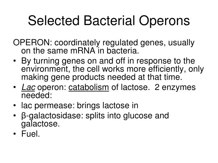 Selected Bacterial Operons
