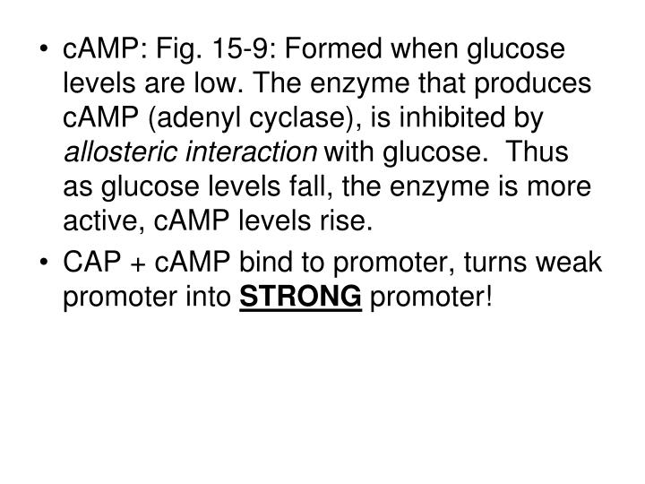 cAMP: Fig. 15-9: Formed when glucose levels are low. The enzyme that produces cAMP (adenyl cyclase), is inhibited by