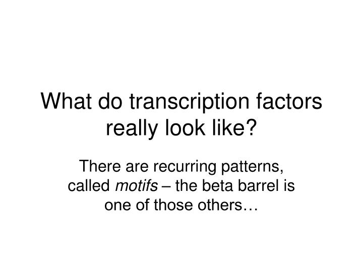 What do transcription factors really look like?