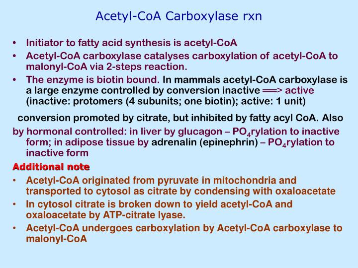 Acetyl-CoA Carboxylase rxn
