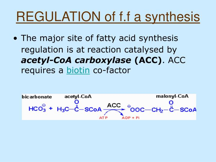 REGULATION of f.f a synthesis