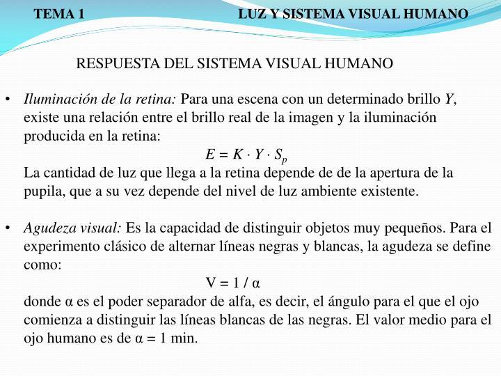 TEMA 1                                            LUZ Y SISTEMA VISUAL HUMANO
