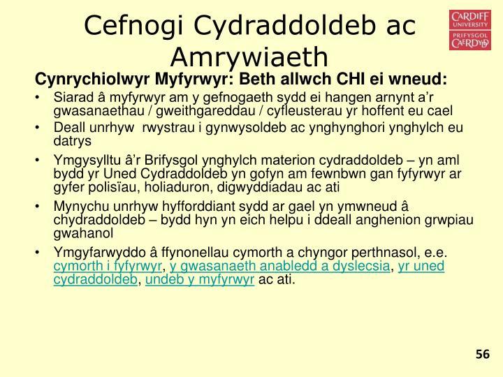 Cefnogi Cydraddoldeb ac Amrywiaeth