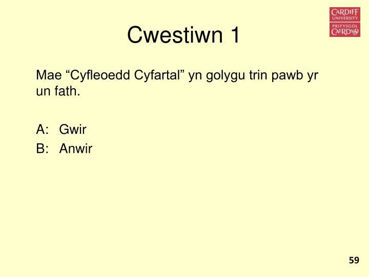 Cwestiwn 1