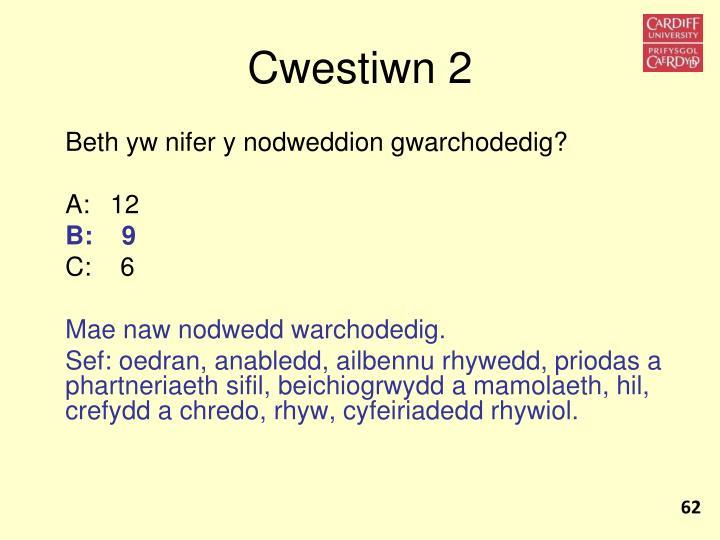 Cwestiwn 2