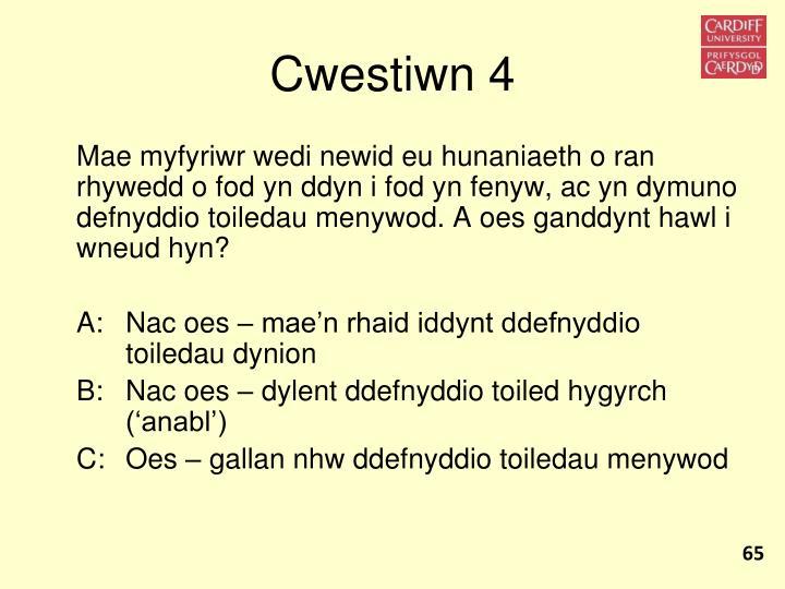 Cwestiwn 4