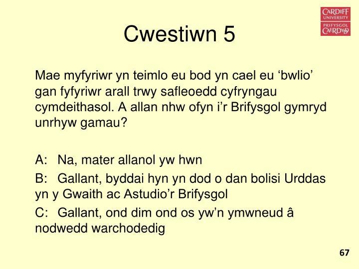 Cwestiwn 5