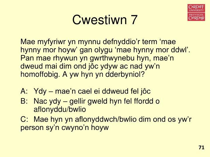 Cwestiwn 7