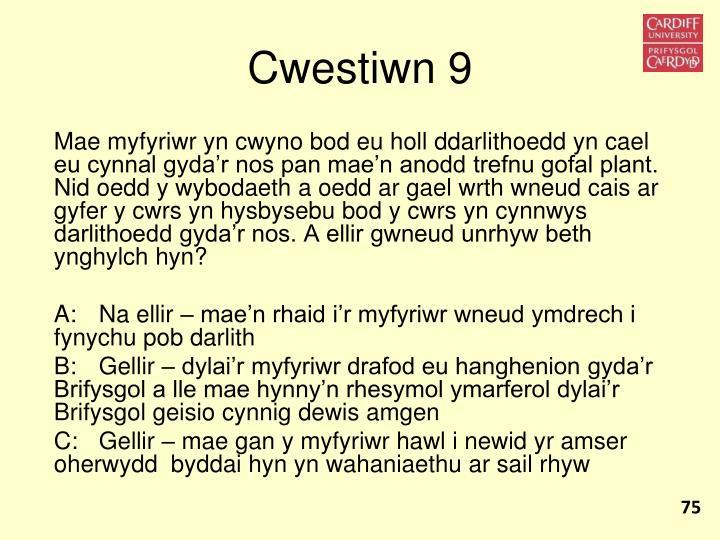 Cwestiwn 9
