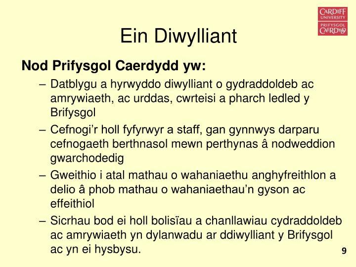 Ein Diwylliant