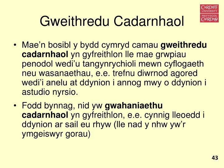 Gweithredu Cadarnhaol