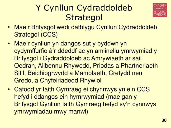 Y Cynllun Cydraddoldeb